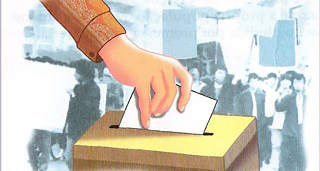 eleição-consu